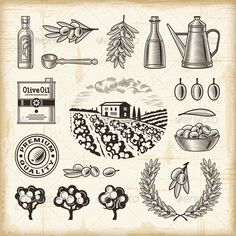 Vintage Olive Harvest Set  #GraphicRiver         A set of fully editable vintage olive harvest elements in woodcut style. EPS10 vector illustration with clipping mask. Use gradient mesh and transparency. Texts on this illustration are my handmade work and not editable.     Created: 25June13