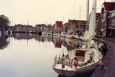 Hoorn - Foto de Mário F. Fontanive