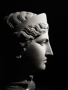 Body and Beauty in Ancient Greece 15