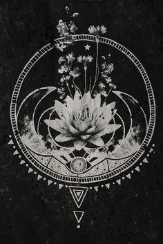 art-chalk-drawing-flowers-Favim.com-2113418.jpg (427×640)