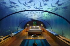 Bedroom in the Maldives ~ I would rather this as a roof for my toilet, bathroom and study, but it is just divine none the less.