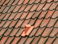 Because what homeowner doesn't want a bunch of birds living in their roof, this is a line of ceramic birdhouse roof tiles designed by Klaas Kuiken. I think they're a real product you can buy, but they only really. Casa Gaudi, Terra Verde, Red Tiles, Villa Design, Bird Houses, Bird Feeders, Design Inspiration, Crafts, House Roof