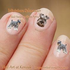 Miniature Schnauzer Nail Art, Dog Nail Art Stickers, portrait, standing, fingernail art, puppy, adult, decals, photographic nail art