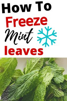 Always throwing away fresh herbs? Heres how to freeze mint leaves and other herbs to stop them from ending up in the food waste. Mint Leaves Recipe, Fresh Mint Leaves, Uses For Mint Leaves, Budget Freezer Meals, Budget Recipes, Freezer Cooking, Frugal Meals, Planning Budget, Menu Planning