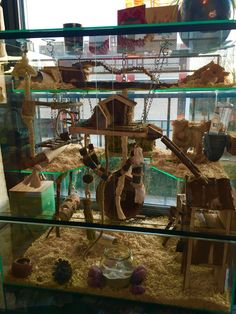Hamster/ mouse cage