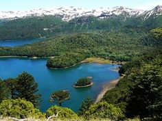 Conguillío National Park, Chile, is located in the Andes. Extensive forests, formed mainly by Araucarias and Nothofagus species, and small lakes increase the scenic beauty of the park. Natural Geographic, Sur Chile, Southern Cone, Cheap Air Tickets, South American Countries, Small Lake, Go Camping, Beautiful Places, National Parks