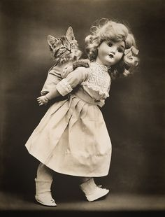 Pick-A-Pack with Cats, photographed by Harry Whittier Frees, June 24, 1914. Photograph shows a doll giving a kitten a piggyback ride.