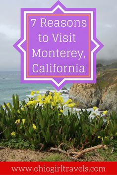 Monterey, California is incredibly breathtaking filled with amazing food, drinks, scenery and much more. We could name hundreds of reasons to visit Monterey, California, but these are our top 7. Don't forget to save this pin to your travel board!
