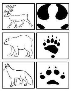 Arctic Animals - Footprint Matching Activity by Preschool Everyday Animal Science, Animal Activities, Animal Tracks In Snow, Canadian Animals, Animal Footprints, Artic Animals, Penguins And Polar Bears, Animal Habitats, Thinking Day