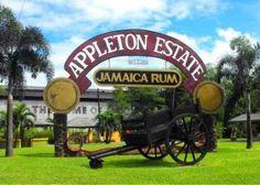 Appleton Estate Rum Factory Tours | Prips Jamaica