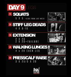 Dana Linn Bailey 28 day program day 9