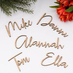 Wedding name place cards / table names / plate names - Laser Cut