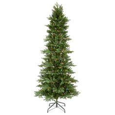6.5' Vickerman C116267LED Tustin Fraiser - Green Christmas Tree