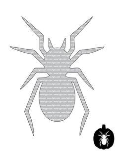 Spider - Beginner Halloween Pumpkin-Carving Templates on HGTV