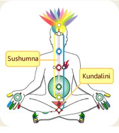 The Coils of Kundalini - http://allyogapositions.com/the-coils-of-kundalini.html