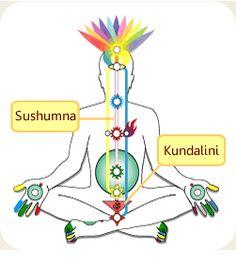 Diagramma-chakra-kundalini.gif