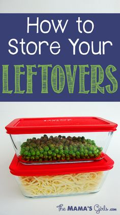 BEST TIPS on how to store leftovers