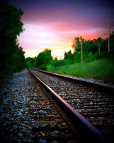 Landscape Photography, Train Photography, Green Grass, Print, Pink Tracks, 8x10