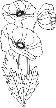 Un bouquet de coquelicots (ou pavots) Hand Embroidery Patterns, Stencil Patterns, Applique Patterns, Flower Patterns, Embroidery Designs, Flower Coloring Pages, Watercolor Flowers, Watercolor Paintings, Pictures To Paint