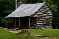 Carter Shields Cabin In Cades Cove - Townsend, Tennessee
