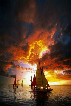 Sail a boat into the sunset