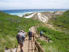 The Bibbulmun Track - steps to Conspicuous Beach Wild Things, National Parks, Hiking, Mountains, Beach, Nature, Travel, Voyage, Viajes