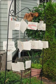 "wedding idea: guests fill out little cards that start with ""you know its love when"" or ""love is"" and hang them on a trellis for the couple."