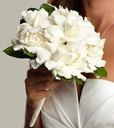 The FTD® Champagne Dreams™ Bouquet - Stunning and fragrant gardenia blooms are arranged to perfection accented with lush greens and finished at the stems with an ivory satin ribbon to create the perfect bouquet for your wedding day. Loooove gardenias