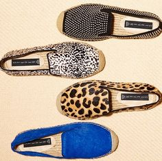 Studs, spots, or solids—theres a LANII to suit everyone! One of each please!
