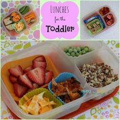 Biting The Hand That Feeds You: Random Lunches for the Toddler
