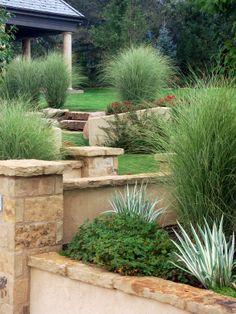 I'm a fan of ornamental grasses