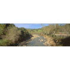 Spring creek in Upper Ojai California Canvas Art - Panoramic Images (36 x 12)