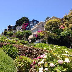 San Francisco Crookedest street Lombard Street