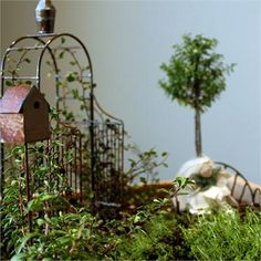 Makely School for Girls | Fairy gardening