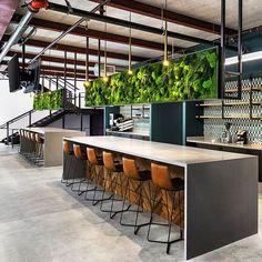 21+ Interesting Interior Moss Wall Design Ideas #PlantedDesign #MossWall #MossWalls #MossBoss #CustomDesign #MossBoss #SmallBusinessWeek #WomanOwnedBusiness #Gusto #PlantWall #PlantPowered #SustainableLiving #HousePlants #ReconnectWithNature #OfficePlants #GreenSpacesInUrbanPlaces #supportsmallbusinesses Ed Design, Wall Design, Design Ideas, Green Office, Stone Panels, Moss Wall, Office Plants, Cafe Interior, Plant Wall