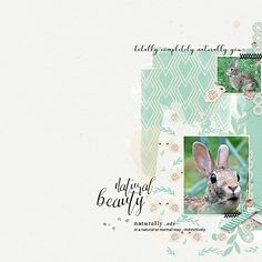 The new mini-O's for April are available at Oscraps, find them all here: http://www.oscraps.com/shop/4th-Friday-April-2017/ while they are still on sale!! All these new products work great together, they share the same colour palette.  I used the following 2 for my layout:  Naturally by Ange Designs http://www.oscraps.com/shop/Ange_Naturally_Minikit.html  Triple Play Templates: Set 9 by Maya de Groot http://www.oscraps.com/shop/Triple-Play-Templates-Set-9.html  (foto wikimedia monique hean)