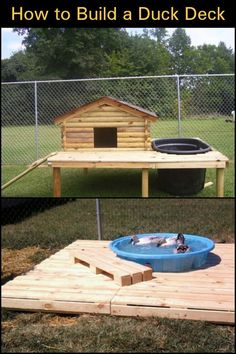 Raise Ducks in Your Backyard by Building This Simple Duck Deck And Pond Backyard Ducks, Backyard Farming, Chickens Backyard, Backyard Ponds, Pet Ducks, Baby Ducks, Raising Ducks, Raising Chickens, Backyard Chicken Coops