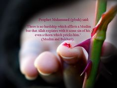 """""""There is no hardship which afflicts a Muslim but that Allah expiates with it some sin of his - even a thorn which pricks him."""" - Prophet Muhammed"""