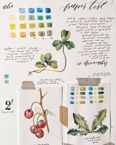 Sasha Martinez (instagram: othersashas) - The full page of paper tests and sketches and um conversations with myself. The dream is to someday keep more legitimate watercolor albums.