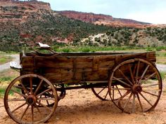 Old Wagon Photograph by George Tuffy - Old Wagon Fine Art Prints and . Country Farm, Country Life, Garden Wagon, Colorado National Monument, Old Wagons, Covered Wagon, Country Scenes, Colour Pallette, Old Farm