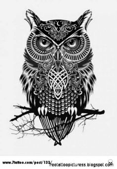 tattoos on Pinterest Owl Tattoo Design Compass Tattoo and