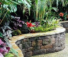 Retaining wall with a lush backdrop of plants