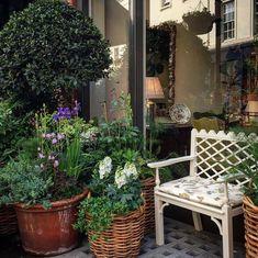 Garden Chairs, Garden Planters, Garden Cottage, Home And Garden, Lattice Garden, Spring Is Coming, Outdoor Landscaping, Amazing Gardens, Container Gardening