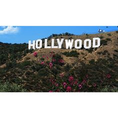 Best Views of the Hollywood Sign Discover Los Angeles ❤ liked on Polyvore featuring backgrounds, los angeles, pictures and photos