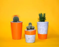 Concrete Planter, Cactus, Succulent Plant Pot, Handmade, Orange- Includes Cactus or Succulent