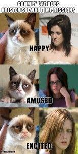 grumpy cat, funny kristen stewart