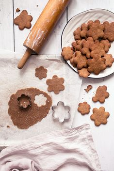 gluten-free & grain-free ginger bread cookies - by VANELJA