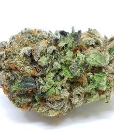Medical marijuana Archives - Page 3 of 4 - Global Weed Shop Weed Shop, Buy Weed, Weed Strains, Indica Strains, Weed Buds, Farm Online, Marijuana Recipes, Weed Edibles, Buy Cannabis Online