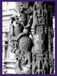 Yaali (http://en.wikipedia.org/wiki/Yali_(Hindu_mythology)) with rider- stone sculpture from 500 yr old Jalakanteeswarar Temple, Vellore