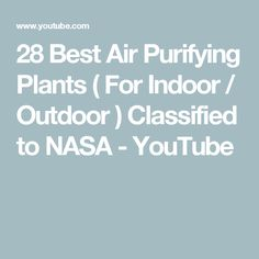 28 Best Air Purifying Plants ( For Indoor / Outdoor ) Classified to NASA - YouTube